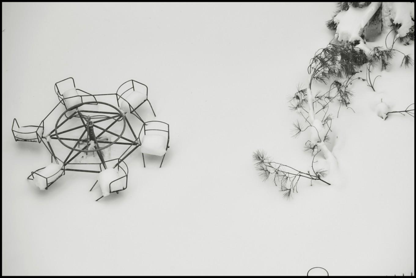 4 febbraio 2012, giardino su via Gramsci