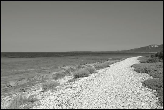 Quarnaro, Isola lunga. Luglio 2008